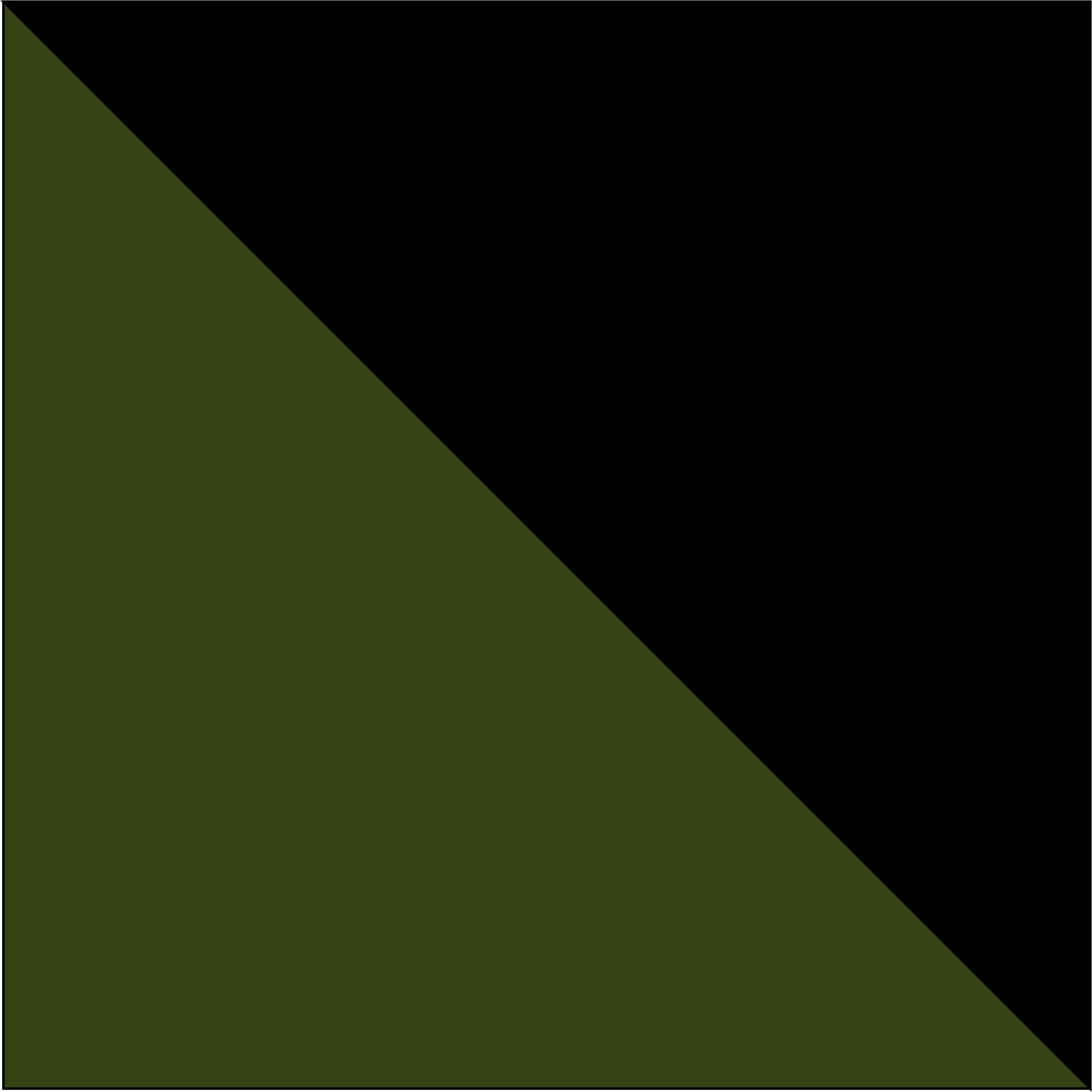 oliwkowy/czarny